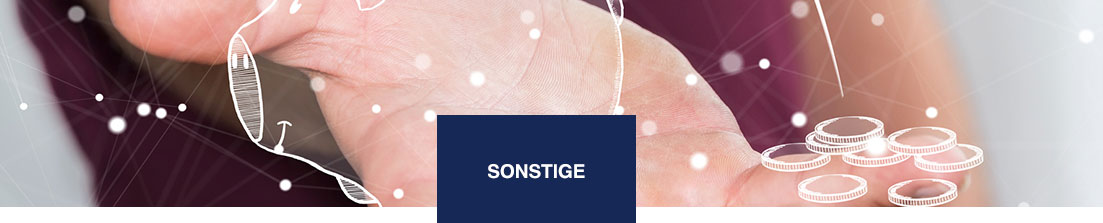 Sonstige Fonds/ Investments